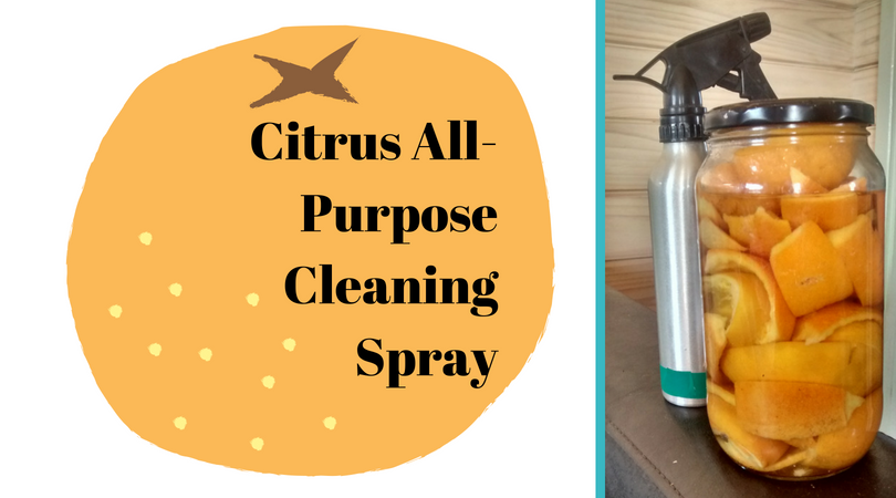 Citrus All-Purpose Cleaning Spray