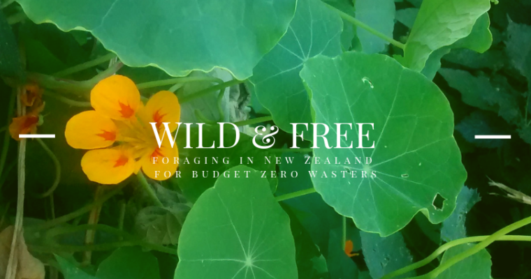 Wild & Free: Foraging in New Zealand for Budget Zero Wasters